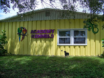 Academy Kennels
